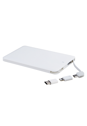 Powerbank WG 4000 mAh